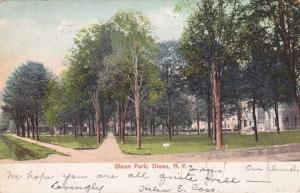 Olean Park - Olean NY, New York - pm 1905 - UDB