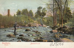 DANBURY , Connecticut, 1901-07 ; Beaverbrook