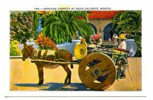 Mexico - Agua Caliente, Donkey Cart