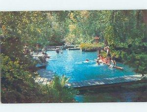 Chrome PARK SCENE Liard Hot Springs - Liard River British Columbia BC AH4075