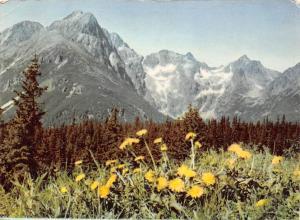 Slovakia Vysoke Tatry, High Tatras, Dolina Zeleneho plesa, Peaks: Kezmarsky...