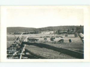 Pre-1962 rppc WILLIAMS LAKE Between Kamloops & Prince George BC W1005