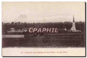Old Postcard Collection Baslique Bois Chenu Le Bois Chenu