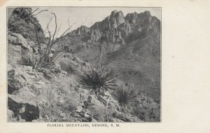 DEMING , N.M. , 1901-07 ; Florida Mountains
