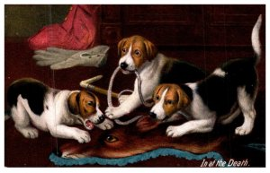 Dog ,  puppies playing with rope