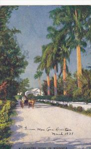 A Country Road In Bermuda 1939