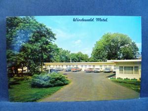 Postcard WV Martinsburg Windewald Motel