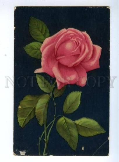 148703 Choice PINK Roses GEM GLOSSO vintage TUCK 1602 PC
