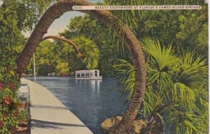 Florida Silver Springs Famous Horse Shoe Palm 1955 Curteich