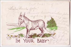 I'm Your Baby - Donkey