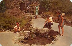 Hot Springs Nat'l Park, AR, Thermal Water Display Springs, 1971 Postcard c5047