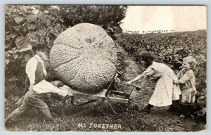 All Together Now~Exaggerated Melon on Wheelbarrow~Children Push Pull~1912 B&W