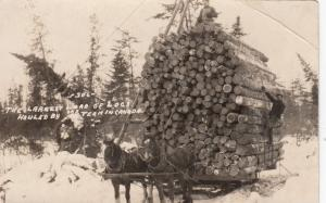 RP: PRINCE ALBERT , Sask. , Canada , 1900-10s ;Logging, Largest Load in Canada