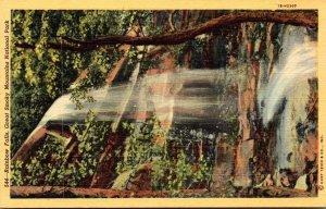Tennesse Smoky Mountains National Park Rainbow Falls Curteich