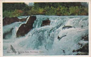 Alaska Ketchikan Salmon Leaping Falls