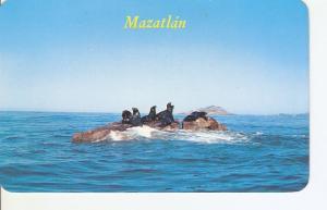 Postal 024679 : Focas descansando en la Piedra de la Tortuga en Mazatlan Sina...