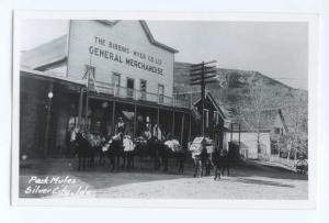 RPPC of Pack Mules, Silver City, Idaho, ID, Kodak Paper Real Photo