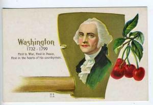 George Washington Hatchet Cherry Tree Postcard