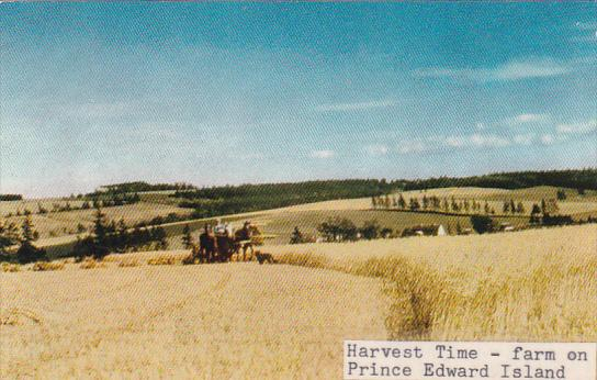Canada Prince Edward Island Harvest Time Farm On