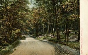 MA - Lynn. Dungeon Rock Road circa 1900