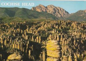 Arizona Chiricahua National Monument Cochise Head