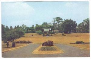 The Bogar Botanical Gardens, Indonesia,40-60s