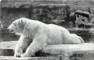 Polar Bear, Hershey Park Zoo -pa_qq_9436
