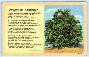 CLOVERDALE, California ~ ORANGE TREE Home of Citrus Fair Sonoma County Postcard