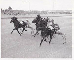 Exhibition Park Raceway, Harness Horse Race, MADAME BLUE CHIP Wins, 1973