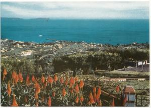 Portugal, Funchal, MADEIRA, The Pico dos Barcelos, unused Postcard