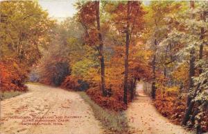 11815 MN  Minneapolis 1908     Minnehaha Boulevard and Pathway along Minnehah...