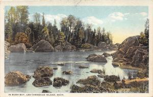 Les Cheneaux Island Michigan~In Bush Bay~Peaceful Creek Scene~1920s Pc