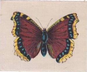 R J Lea Golden Knight Vintage Silk Cigarette Card Butterflies Catocala Electa