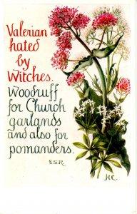 Herb Garden Series #618. Editor: Eleanore S. Rohde; Design by Hilda M Coley