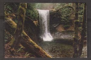 Waterfall In Old Growth Rain Forest Near Nanaimo, BC - Unused c1980