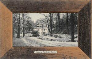 LPS39 Erie Pennsylvania Mineral Springs Hotel Wood Frame Border Postcard