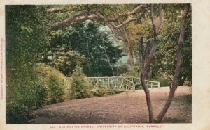 BERKELEY, California, 1901-07; Old Rustic Bridge, University of California