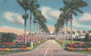 Florida Hallandale The Track By The Sea One Of The Sea One Of The Nations Mos...