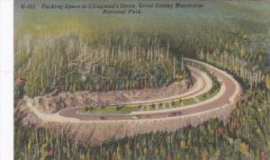 Great Smoky Mountains National Park Parking Space At Clingman's Dome