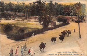 13218  Algeria  Camel  Caravans sur la Route de Biskra a Touggouri