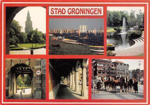 Netherlands Stad Groningen Surfer Street Horses Heineken Chevaux Gate