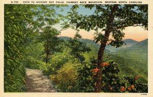 NC - Hickory Nut Falls, Chimney Rock Mountain