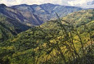POSTAL 56942: Couleur du Burundi Paysage