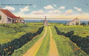 Massachusetts Cape Cod Quaint Scene