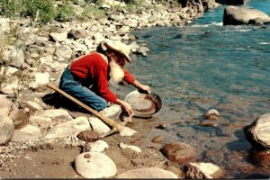 California The Old Miner Panning For Gold