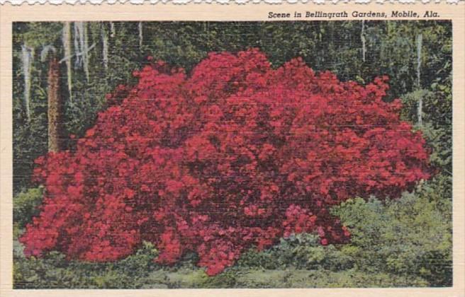 Alabama Mobile Scene In Bellingrath Gardens Curteich