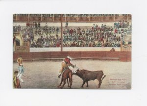 1909 Mexican Bull Fight, Throwing Picador Postcard - Posted - Printed in Germany
