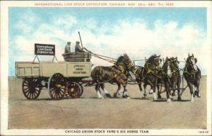 1929 International Live Stock Expo Chicago IL 1929 6 Horse Team Postcard