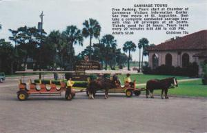 Horse Drawn Carriage Tours - St Augustine FL, Florida