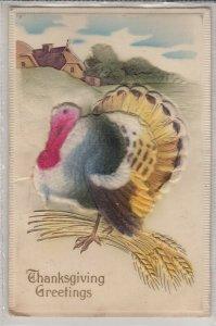 Novelty very embossed Thanksgiving turkey fantasy greetings postcard